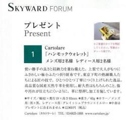 skyward2