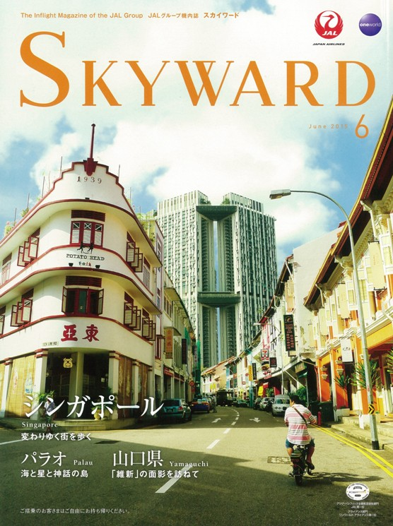 JAL SKYWARD ハンモックウォレット